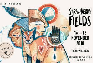 NEXT AT: Strawberry Fields Festival – Nov 2018